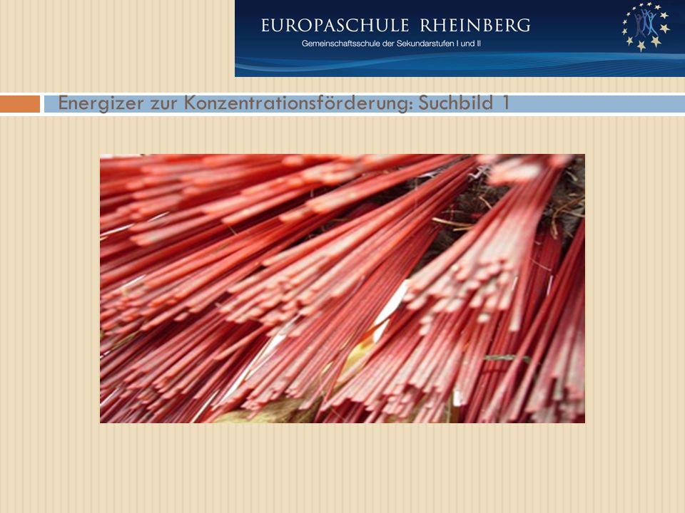 Energizer zur Konzentrationsförderung: Suchbild 1