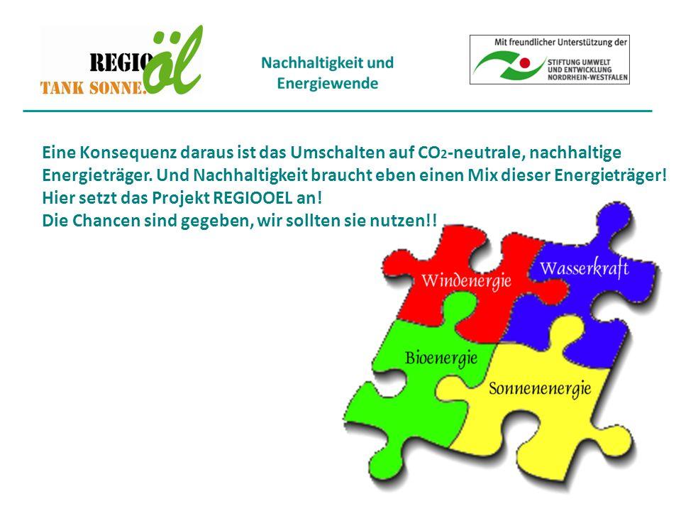 Eine Konsequenz daraus ist das Umschalten auf CO 2 -neutrale, nachhaltige Energieträger.