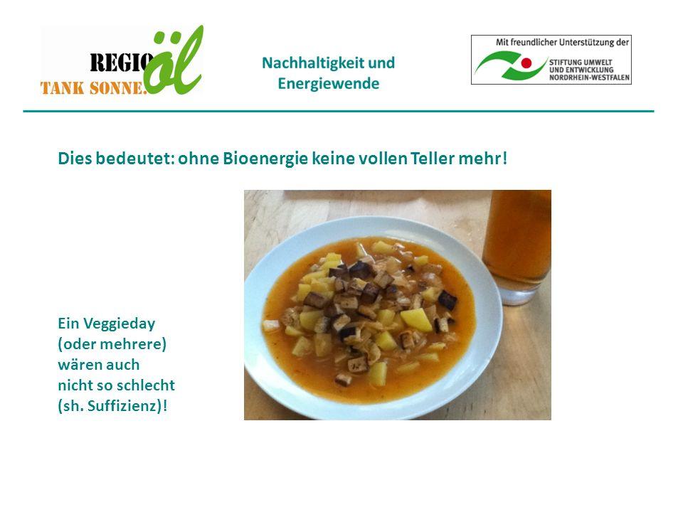 Dies bedeutet: ohne Bioenergie keine vollen Teller mehr.