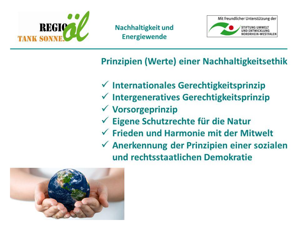 Prinzipien (Werte) einer Nachhaltigkeitsethik Internationales Gerechtigkeitsprinzip Intergeneratives Gerechtigkeitsprinzip Vorsorgeprinzip Eigene Schutzrechte für die Natur Frieden und Harmonie mit der Mitwelt Anerkennung der Prinzipien einer sozialen und rechtsstaatlichen Demokratie