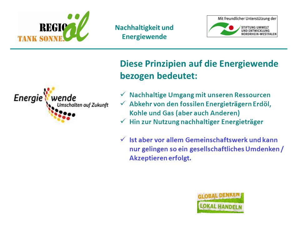 Die zentralen Ziele der Energiewende : Klimaschutz Ressourcenschonung und eine risikoarme Energieversorgung.