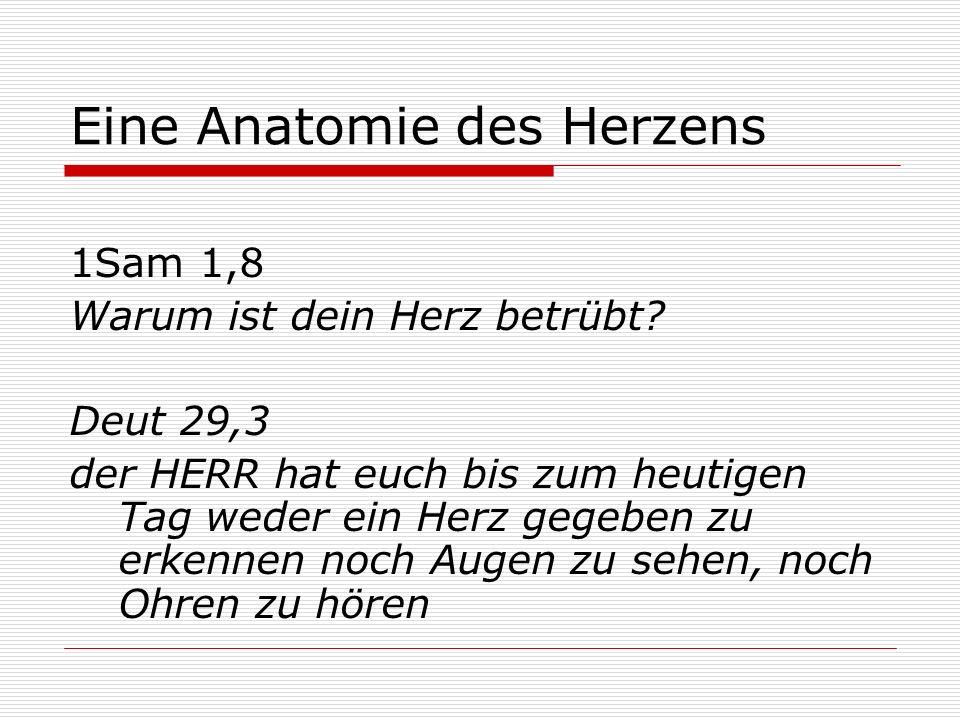 Eine Anatomie des Herzens 1Sam 1,8 Warum ist dein Herz betrübt? Deut 29,3 der HERR hat euch bis zum heutigen Tag weder ein Herz gegeben zu erkennen no