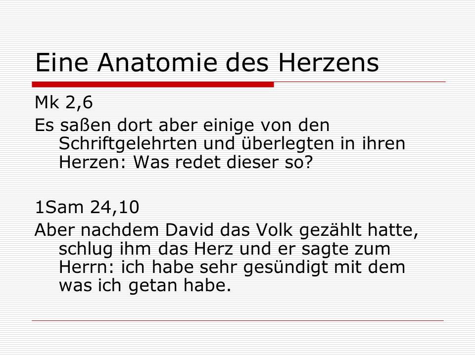 Atemberaubend Eine Anatomie Der Sucht Galerie - Anatomie Von ...