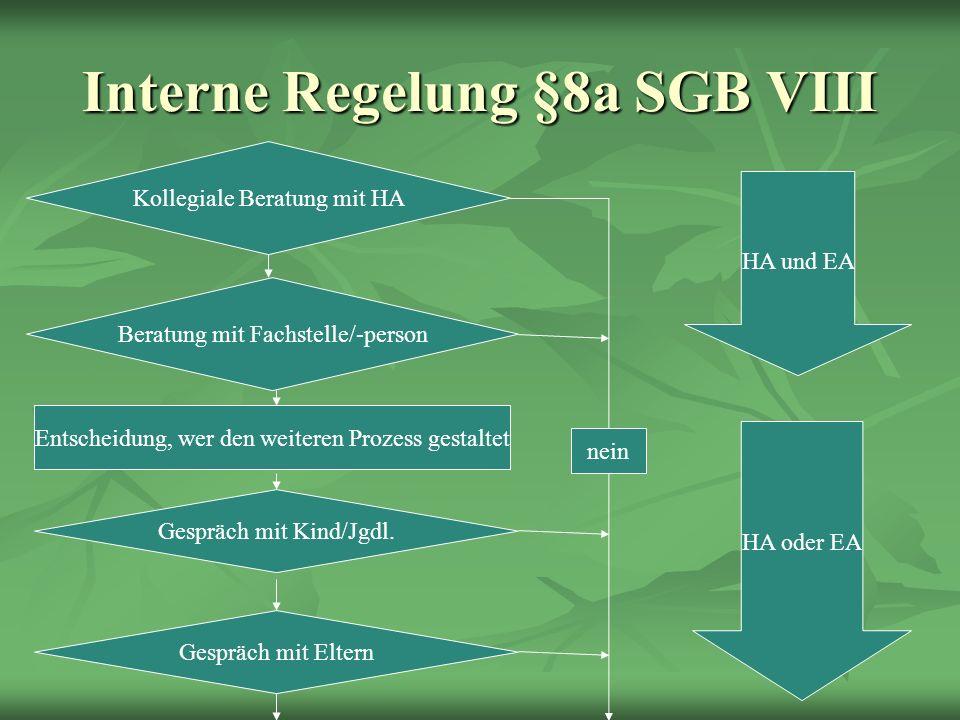 Interne Regelung §8a SGB VIII Kollegiale Beratung mit HA Beratung mit Fachstelle/-person Entscheidung, wer den weiteren Prozess gestaltet Gespräch mit Kind/Jgdl.