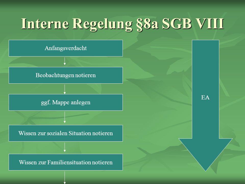 Interne Regelung §8a SGB VIII Anfangsverdacht Beobachtungen notieren ggf.