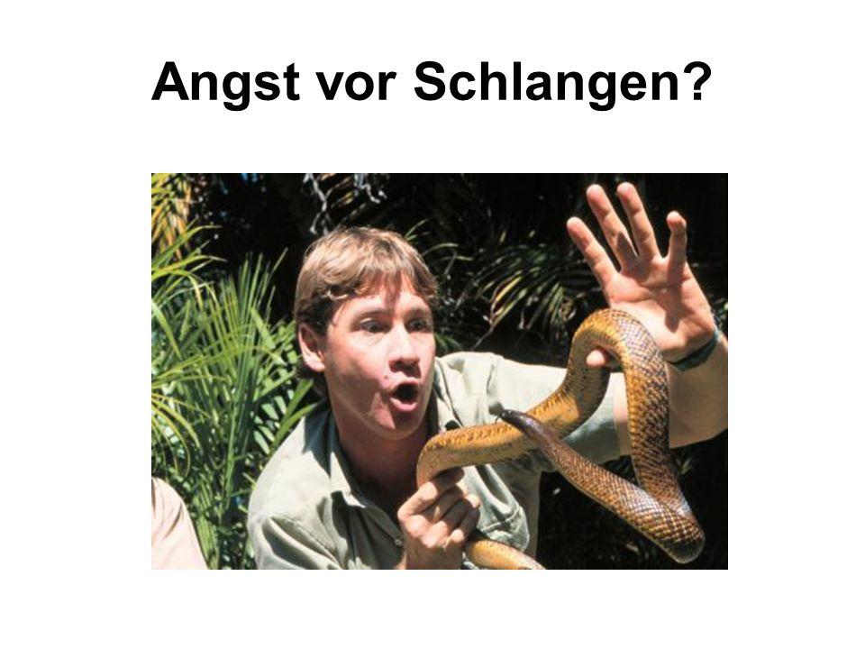 Angst vor Schlangen?