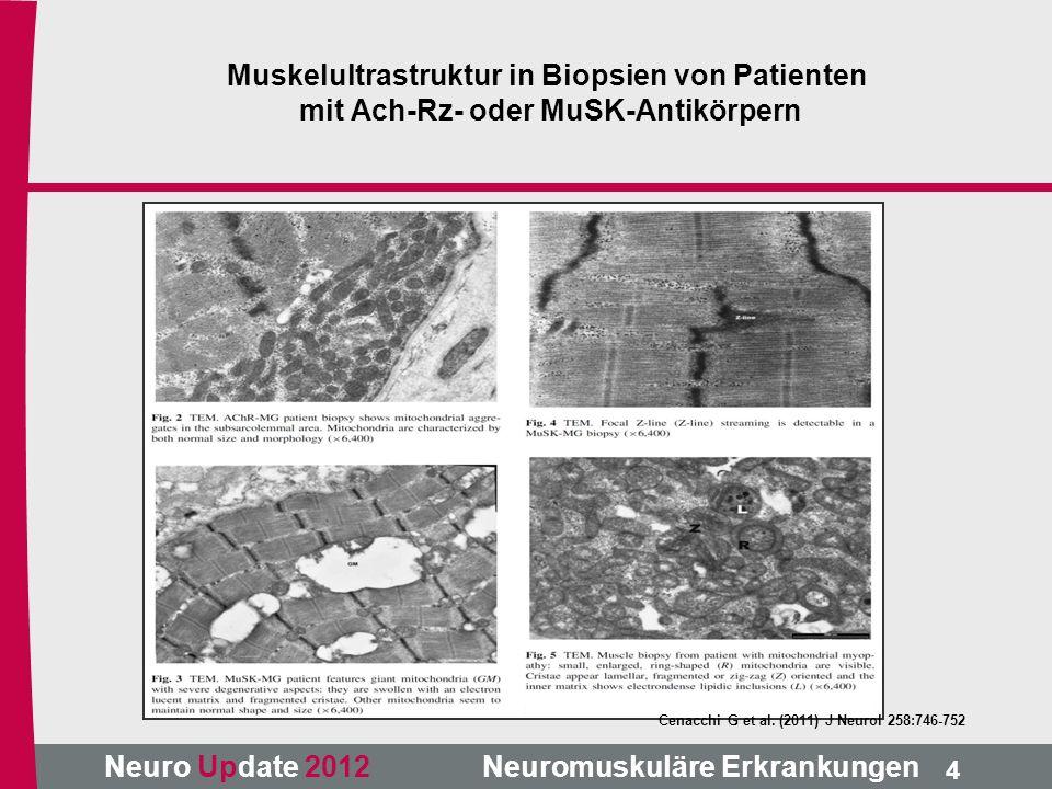Neuro Update 2012 Neuromuskuläre Erkrankungen Cenacchi G et al. (2011) J Neurol 258:746-752 4 Muskelultrastruktur in Biopsien von Patienten mit Ach-Rz
