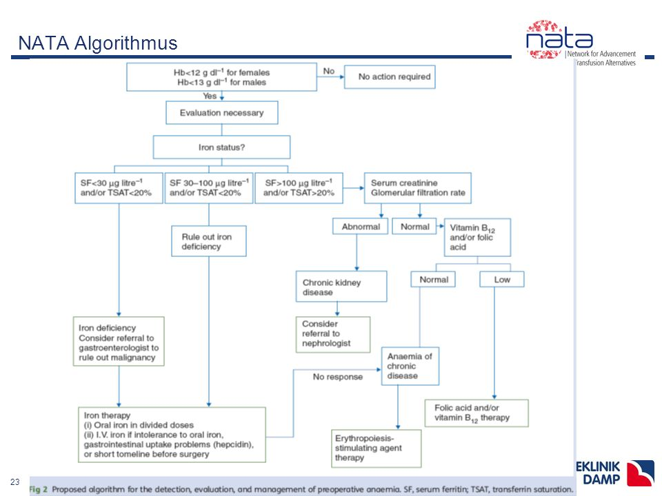 2311-08-03 Ostseeklinik Damp präop.Anämietherapie- Anästhesie.ppt NATA Algorithmus