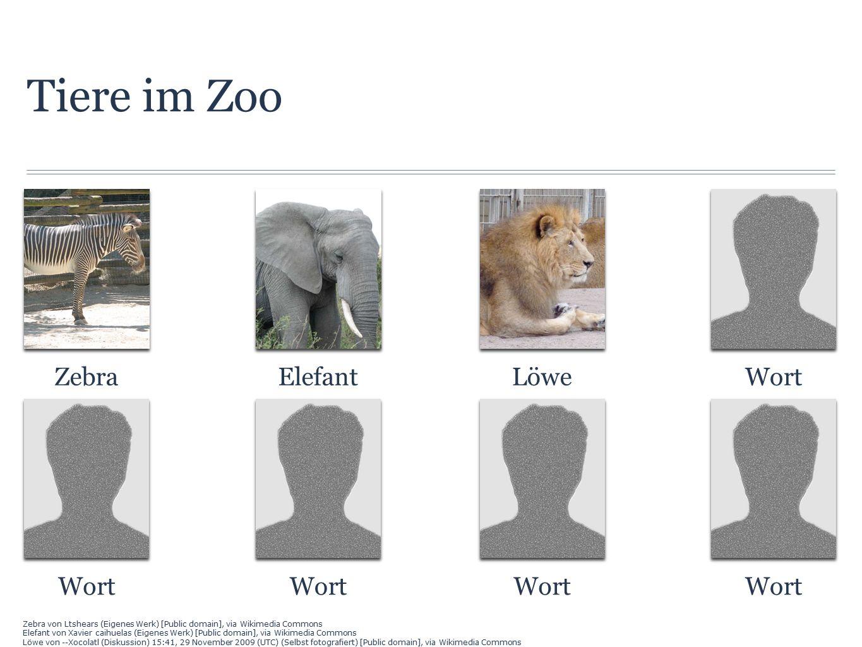 Tiere im Zoo ZebraElefantLöweWort Zebra von Ltshears (Eigenes Werk) [Public domain], via Wikimedia Commons Elefant von Xavier caihuelas (Eigenes Werk) [Public domain], via Wikimedia Commons Löwe von --Xocolatl (Diskussion) 15:41, 29 November 2009 (UTC) (Selbst fotografiert) [Public domain], via Wikimedia Commons