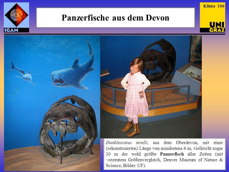 Panzerfische aus dem Devon Dunkleosteus terelli, aus dem Oberdevon, mit einer (rekonstruierten) Länge von mindestens 6 m, vielleicht sogar 10 m der wo