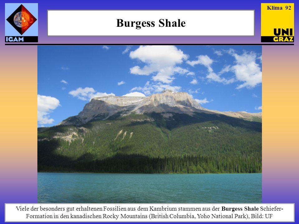 Burgess Shale Klima 92 Viele der besonders gut erhaltenen Fossilien aus dem Kambrium stammen aus der Burgess Shale Schiefer- Formation in den kanadisc