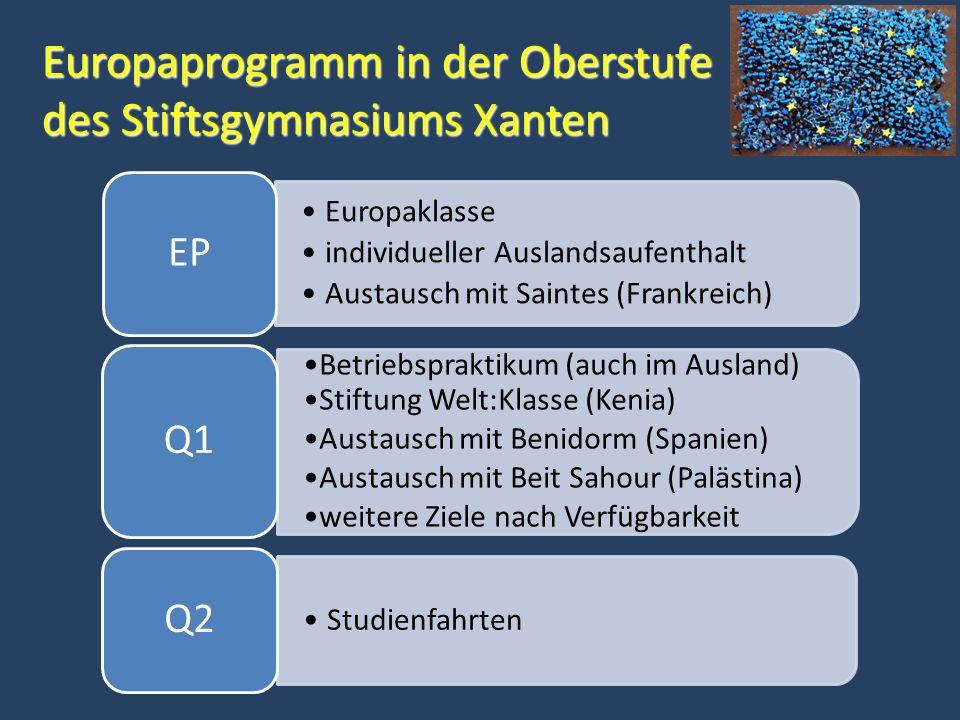 Zusatzkurse und Facharbeit im 2.Jahr der Qualifikationsphase Wer im 1.
