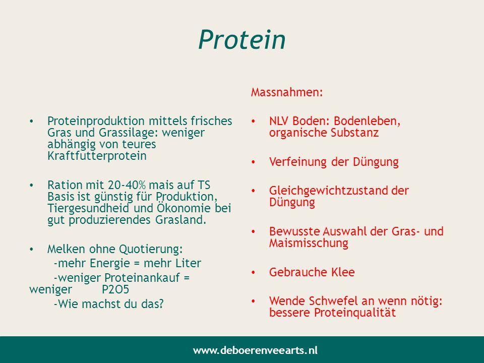 Protein Proteinproduktion mittels frisches Gras und Grassilage: weniger abhängig von teures Kraftfutterprotein Ration mit 20-40% mais auf TS Basis ist