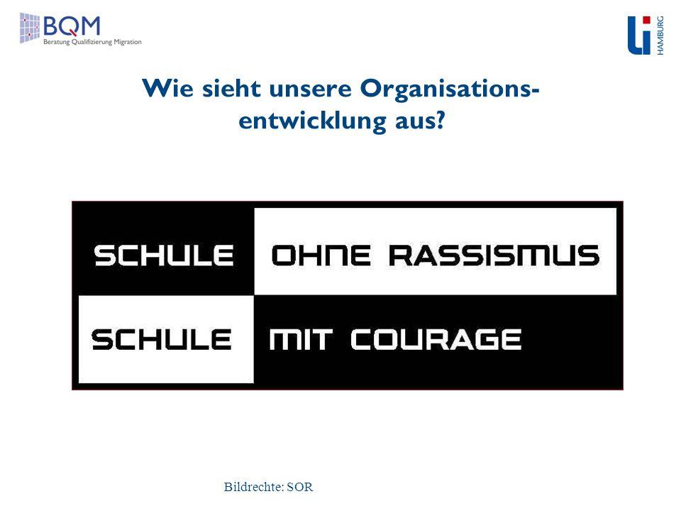 Wie sieht unsere Organisations- entwicklung aus? Bildrechte: SOR
