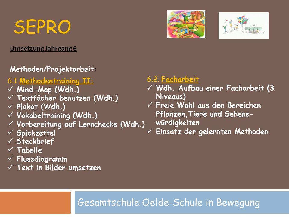 SEPRO Gesamtschule Oelde-Schule in Bewegung Methoden/Projektarbeit: 6.1 Methodentraining II: Mind-Map (Wdh.) Textfächer benutzen (Wdh.) Plakat (Wdh.)