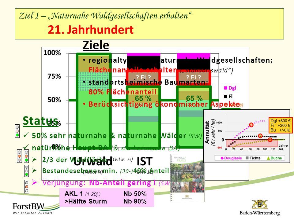 """Ziele regionaltypische, naturnahe Waldgesellschaften: Flächenanteile erhalten (""""Standortswald"""") standortsheimische Baumarten: 80% Flächenanteil Berück"""