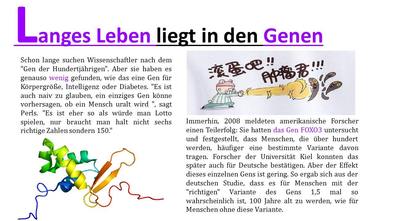 L anges Leben liegt in den Genen Schon lange suchen Wissenschaftler nach dem Gen der Hundertjährigen .