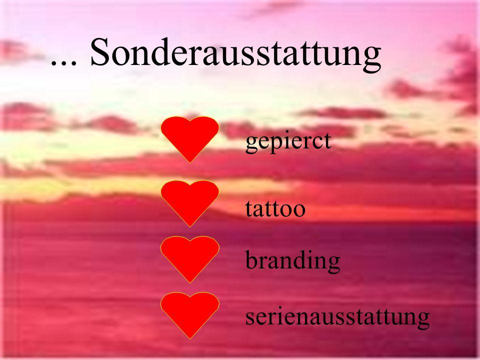 ... Sonderausstattung gepierct tattoo branding serienausstattung