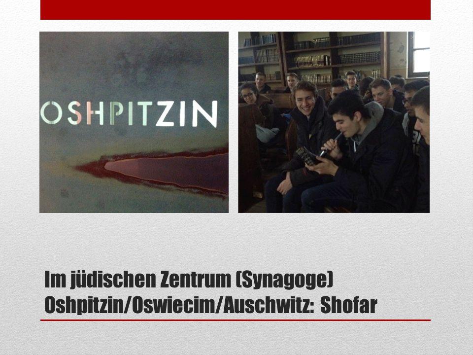 Im jüdischen Zentrum (Synagoge) Oshpitzin/Oswiecim/Auschwitz: Shofar