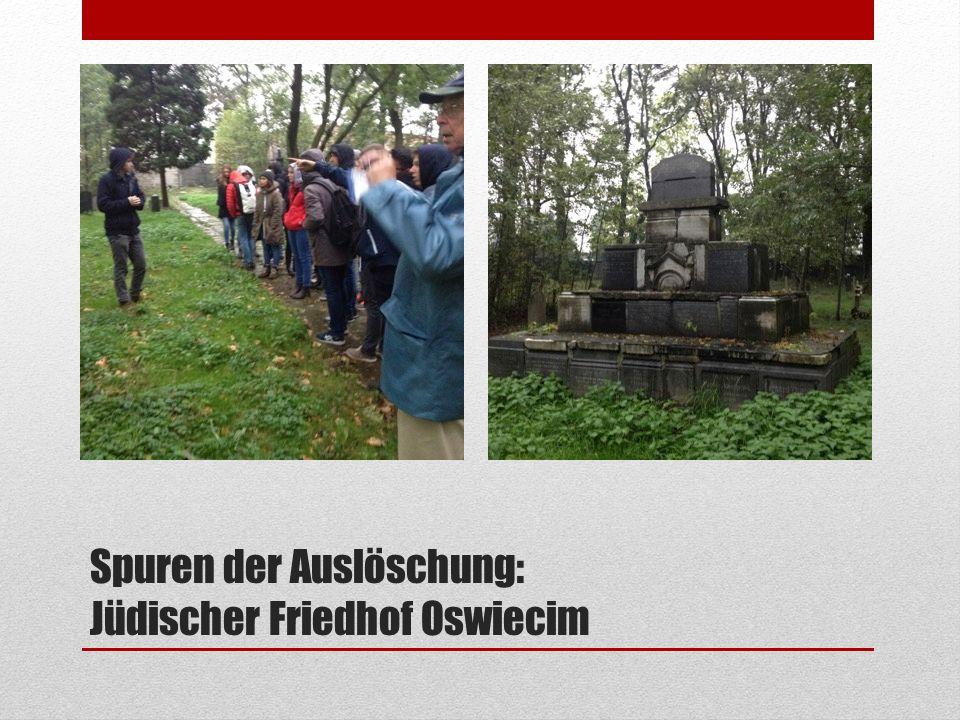 Spuren der Auslöschung: Jüdischer Friedhof Oswiecim
