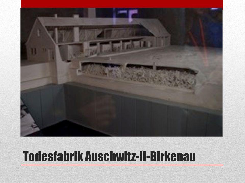 Todesfabrik Auschwitz-II-Birkenau