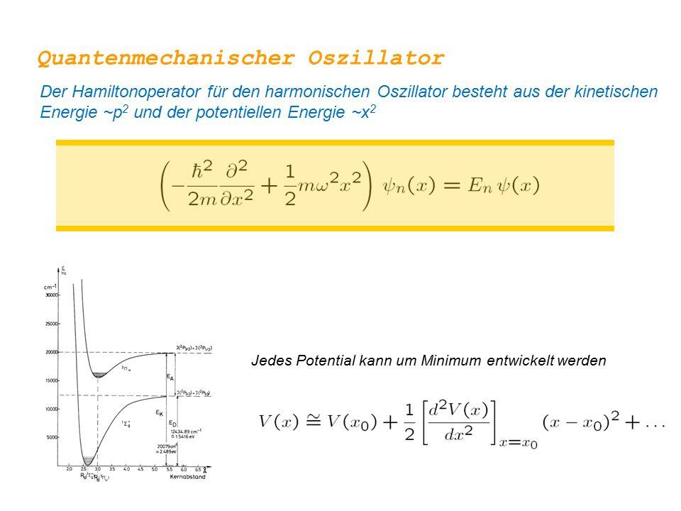 Jedes Potential kann um Minimum entwickelt werden Quantenmechanischer Oszillator Der Hamiltonoperator für den harmonischen Oszillator besteht aus der