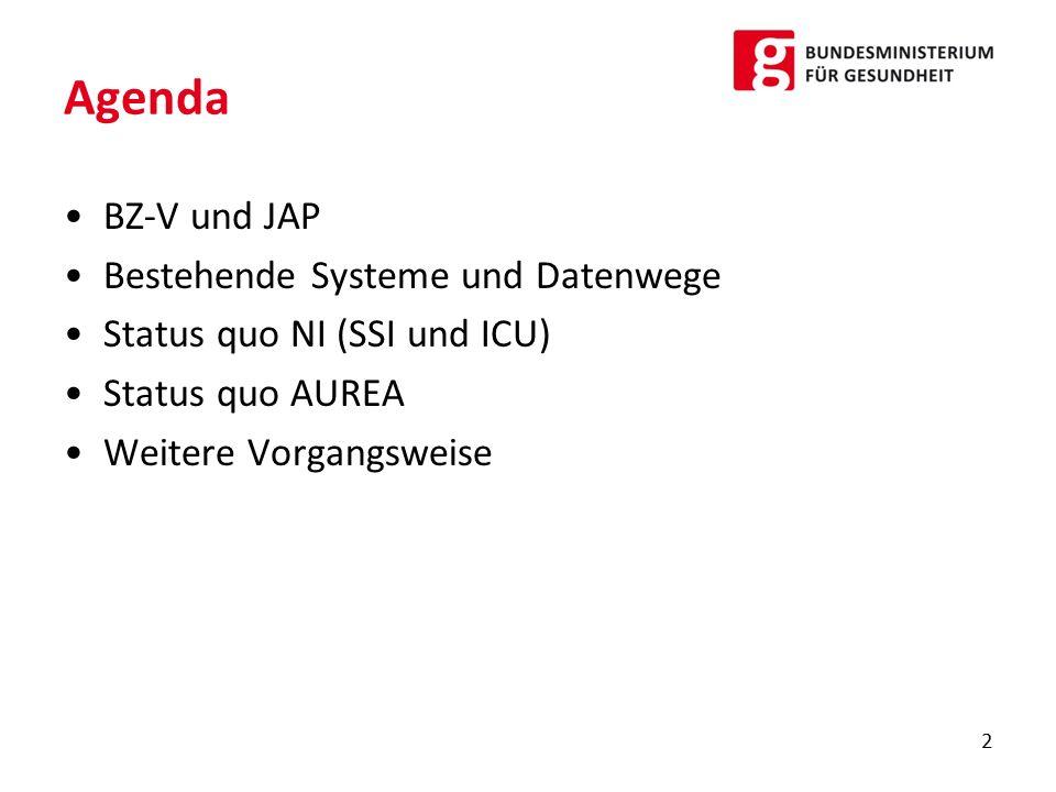 Agenda BZ-V und JAP Bestehende Systeme und Datenwege Status quo NI (SSI und ICU) Status quo AUREA Weitere Vorgangsweise 2