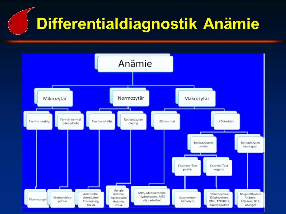 Differentialdiagnostik Anämie