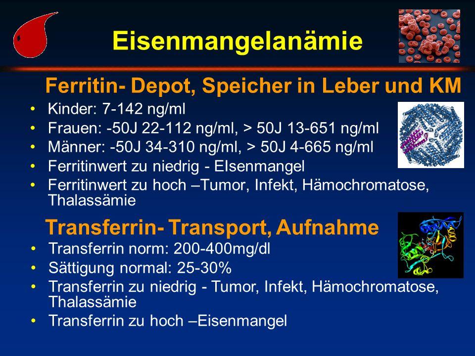 Eisenmangelanämie Kinder: 7-142 ng/ml Frauen: -50J 22-112 ng/ml, > 50J 13-651 ng/ml Männer: -50J 34-310 ng/ml, > 50J 4-665 ng/ml Ferritinwert zu niedr