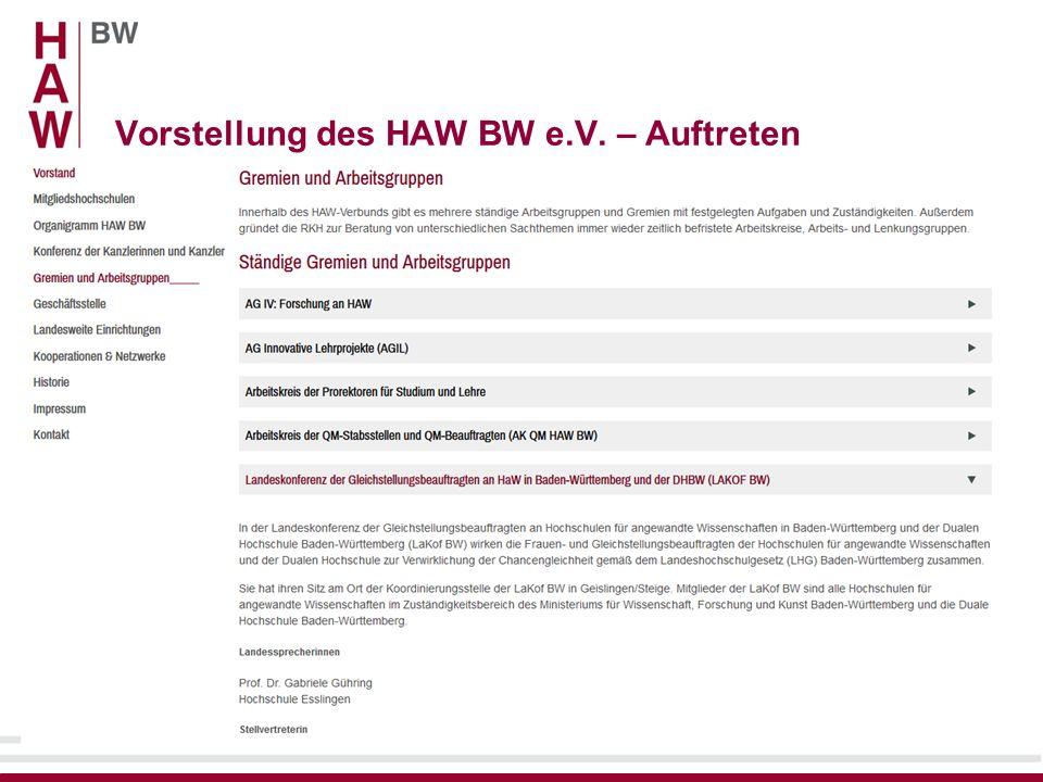 Vorstellung des HAW BW e.V. – Auftreten