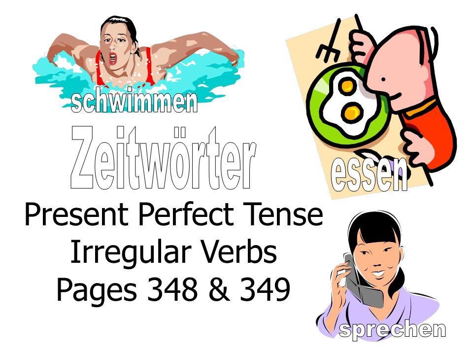 Present Perfect Tense Irregular Verbs Pages 348 & 349