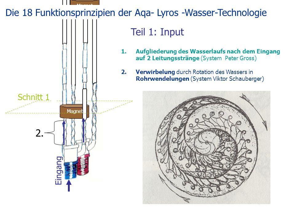 Teil 1: Input Magnet Eingang Schnitt 1 1.Aufgliederung des Wasserlaufs nach dem Eingang auf 2 Leitungsstränge (System Peter Gross) 2.Verwirbelung durch Rotation des Wassers in Rohrwendelungen (System Viktor Schauberger) 2.