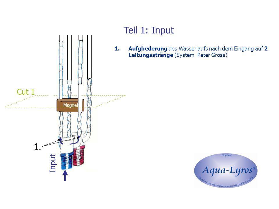 Teil 1: Input Magnet Input Cut 1 1.Aufgliederung des Wasserlaufs nach dem Eingang auf 2 Leitungsstränge (System Peter Gross) 1.