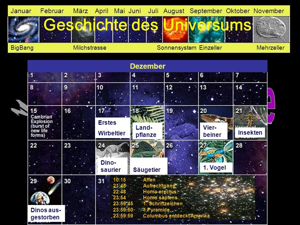 Januar Februar März April Mai Juni Juli August September Oktober November BigBang Milchstrasse Sonnensystem Einzeller Mehrzeller Erstes Wirbeltier Lan