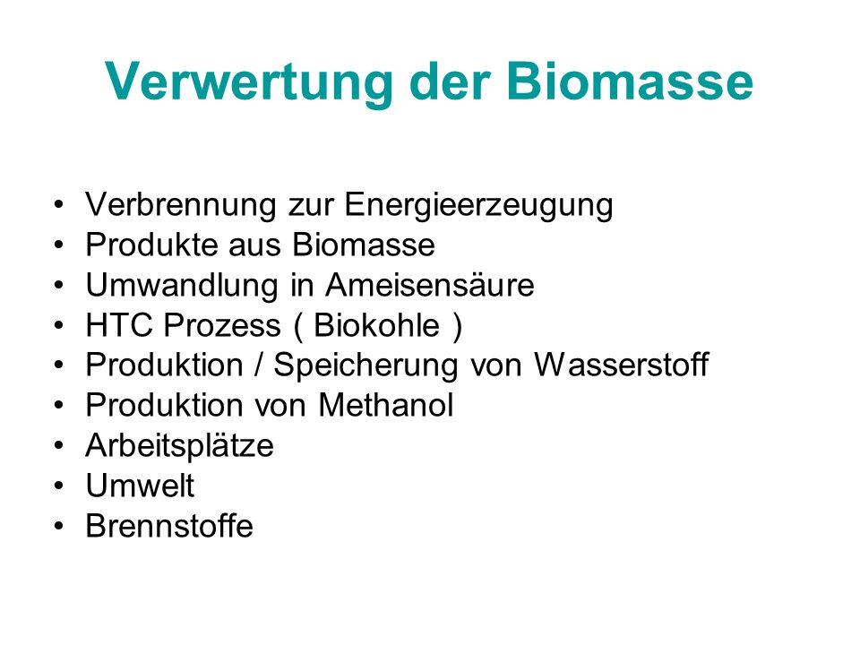 Verwertung der Biomasse Verbrennung zur Energieerzeugung Produkte aus Biomasse Umwandlung in Ameisensäure HTC Prozess ( Biokohle ) Produktion / Speich