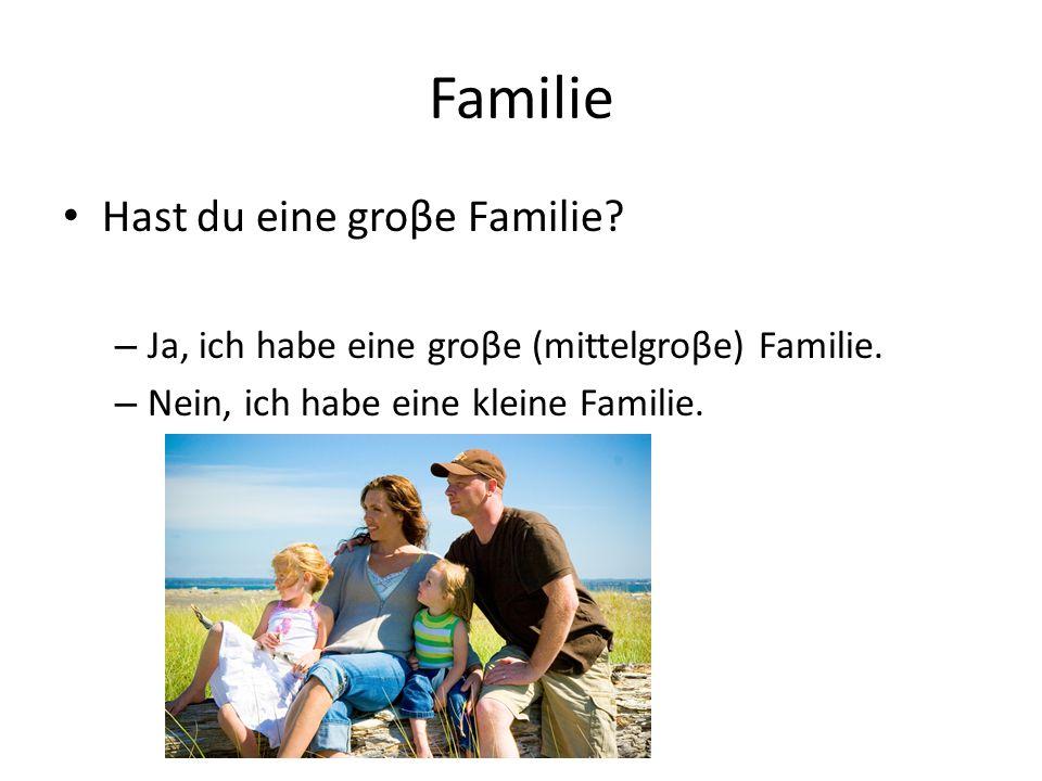 Familie Hast du eine groβe Familie.– Ja, ich habe eine groβe (mittelgroβe) Familie.