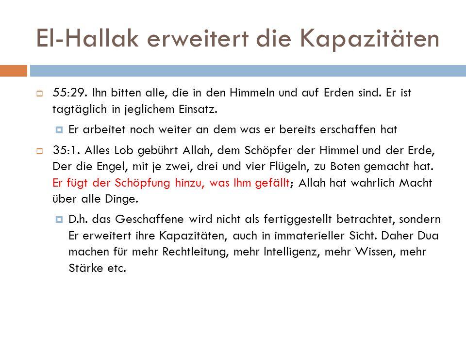 El-Hallak erweitert die Kapazitäten  55:29.