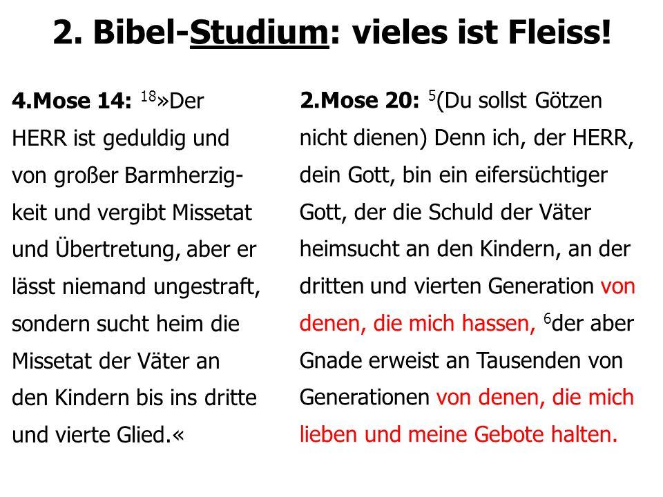 2. Bibel-Studium: vieles ist Fleiss! 4.Mose 14: 18 »Der HERR ist geduldig und von großer Barmherzig- keit und vergibt Missetat und Übertretung, aber e