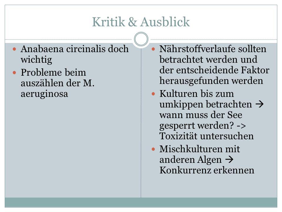 Kritik & Ausblick Anabaena circinalis doch wichtig Probleme beim auszählen der M. aeruginosa Nährstoffverlaufe sollten betrachtet werden und der entsc