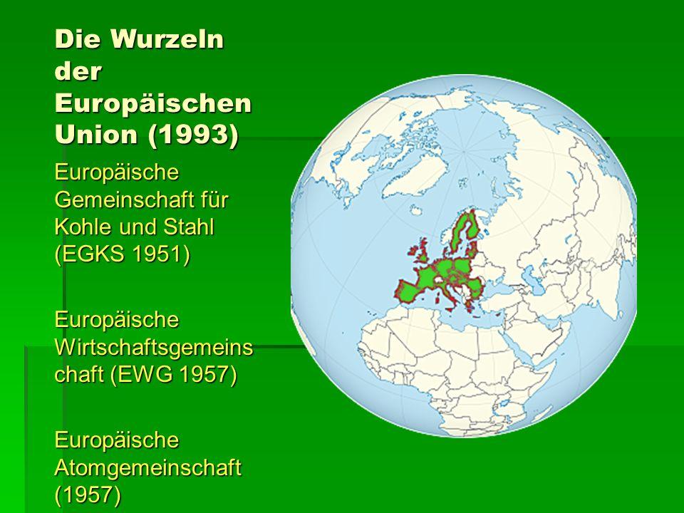 Die Wurzeln der Europäischen Union (1993) Europäische Gemeinschaft für Kohle und Stahl (EGKS 1951) Europäische Wirtschaftsgemeins chaft (EWG 1957) Europäische Atomgemeinschaft (1957)