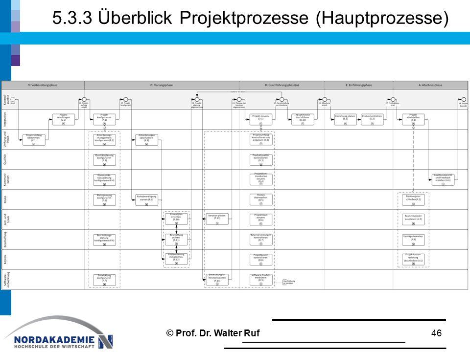 5.3.3 Überblick Projektprozesse (Hauptprozesse) © Prof. Dr. Walter Ruf46