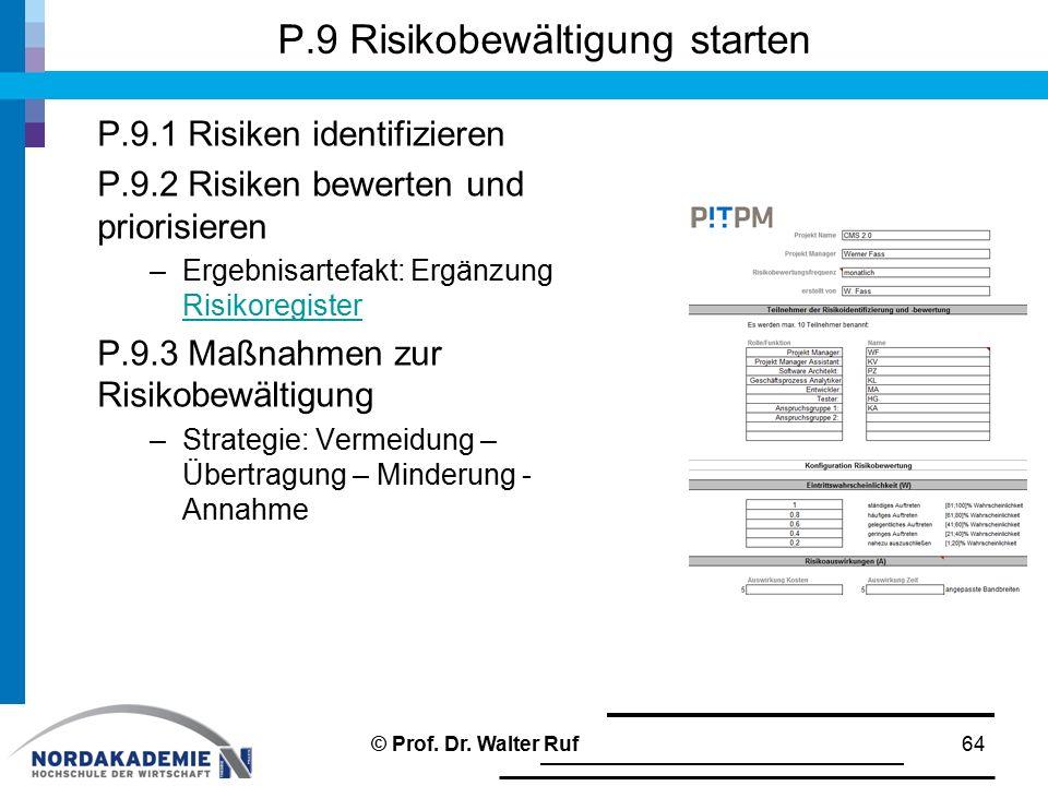 P.9 Risikobewältigung starten P.9.1 Risiken identifizieren P.9.2 Risiken bewerten und priorisieren –Ergebnisartefakt: Ergänzung Risikoregister Risikoregister P.9.3 Maßnahmen zur Risikobewältigung –Strategie: Vermeidung – Übertragung – Minderung - Annahme © Prof.