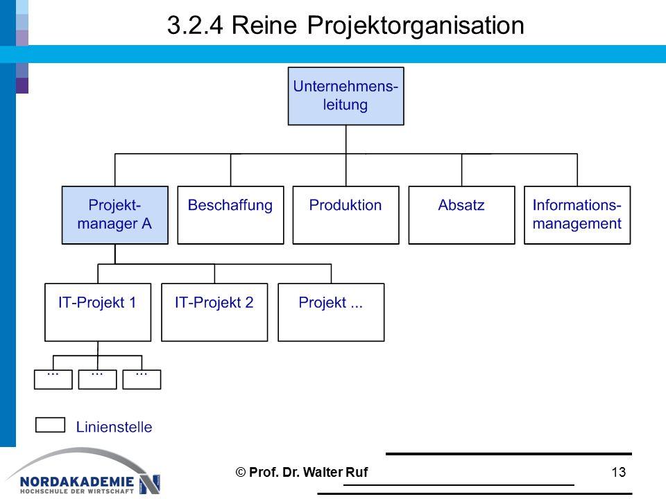 3.2.4 Reine Projektorganisation 13© Prof. Dr. Walter Ruf