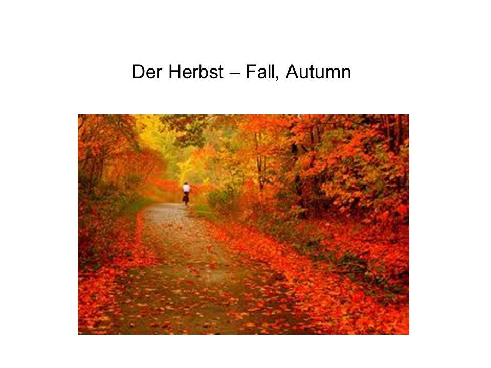 Der Herbst – Fall, Autumn