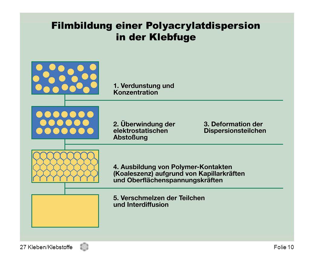 Filmbildung einer Polyacrylatdispersion in der Klebfuge 27 Kleben/KlebstoffeFolie 10