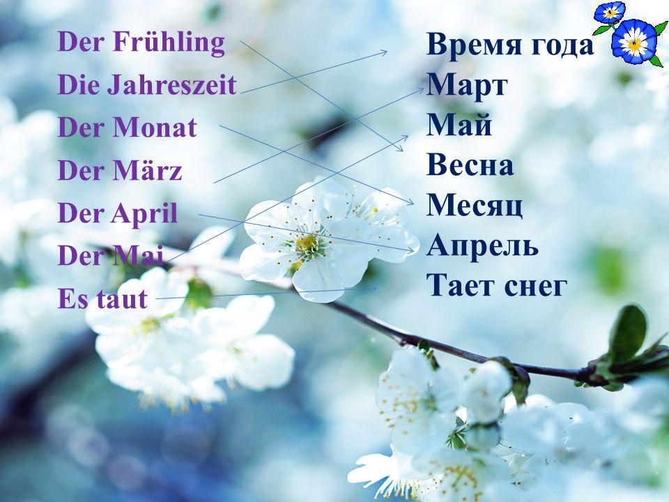 Der Frühling Die Jahreszeit Der Monat Der März Der April Der Mai Es taut Время года Март Май Весна Месяц Апрель Тает снег