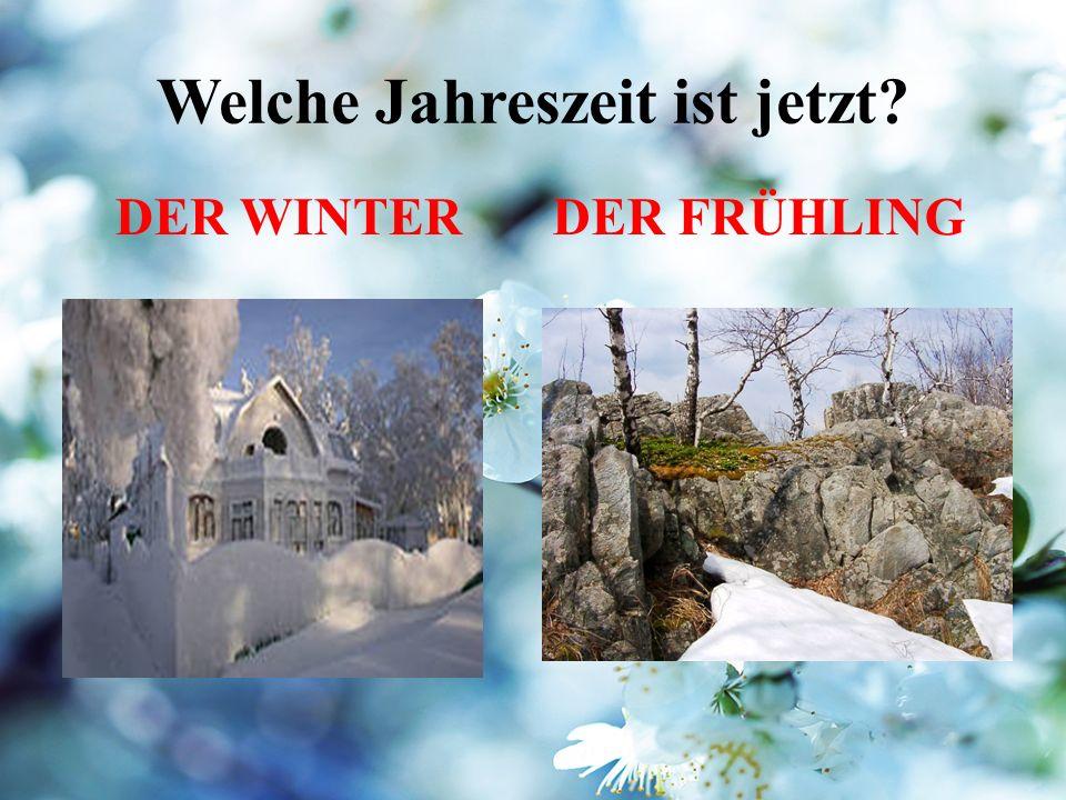 Welche Jahreszeit ist jetzt DER WINTERDER FRÜHLING