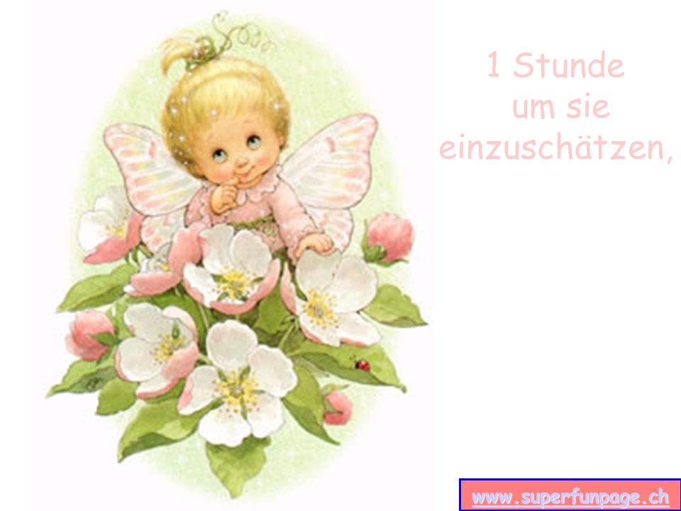 www.superfunpage.ch 1 Tag um sie gern oder lieb zu haben, www.superfunpage.ch