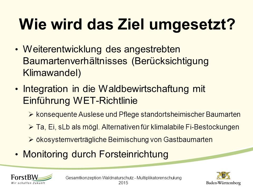 Wie wird das Ziel umgesetzt? Weiterentwicklung des angestrebten Baumartenverhältnisses (Berücksichtigung Klimawandel) Integration in die Waldbewirtsch