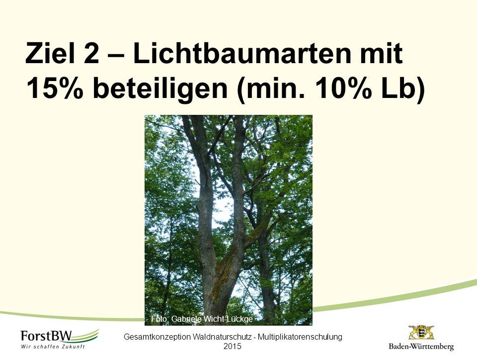 Ziel 2 – Lichtbaumarten mit 15% beteiligen (min. 10% Lb) Gesamtkonzeption Waldnaturschutz - Multiplikatorenschulung 2015 Foto: Gabriele Wicht-Lückge